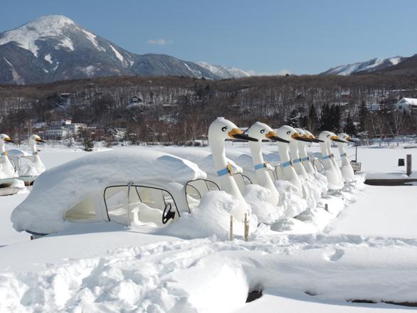 白樺湖 凍ったスワンボート