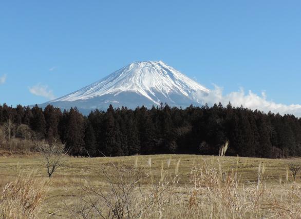 朝霧高原 富士山
