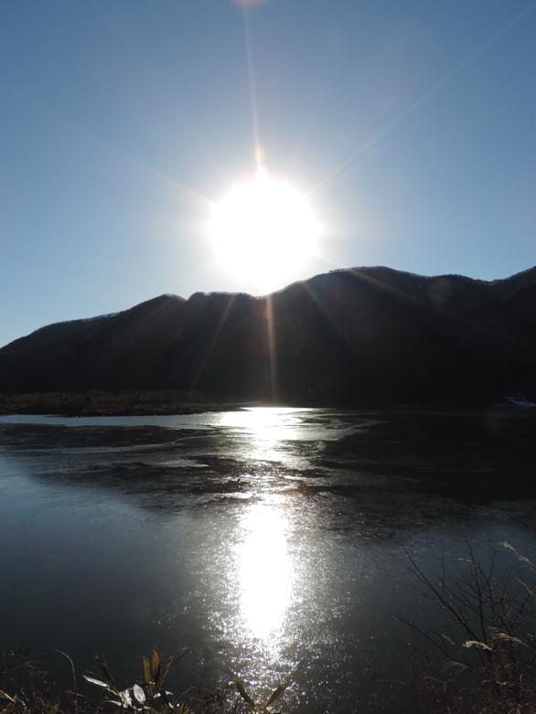 精進湖 逆光
