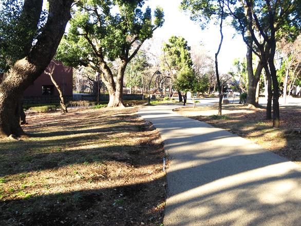 上野公園 木陰