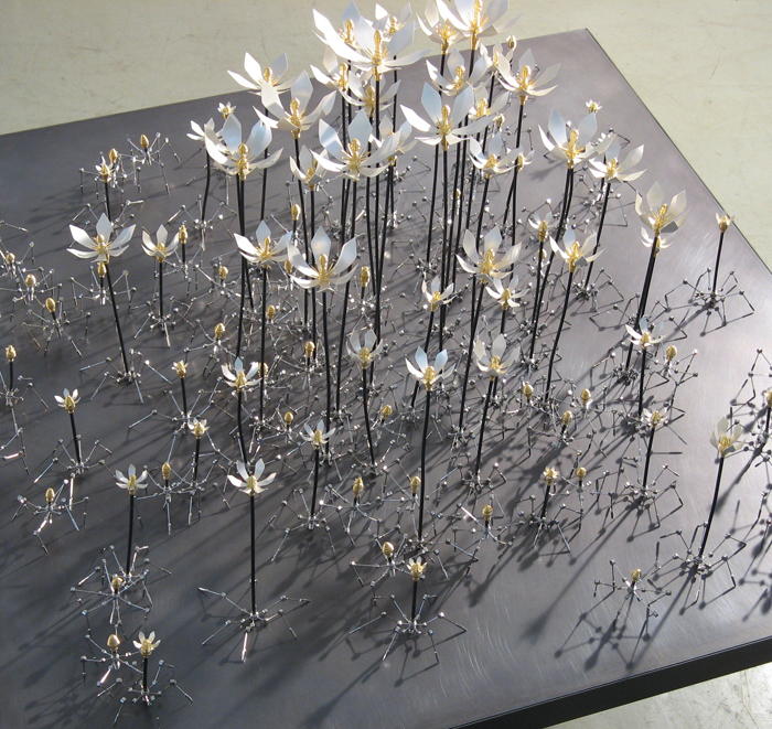 卒業制作「芽花」