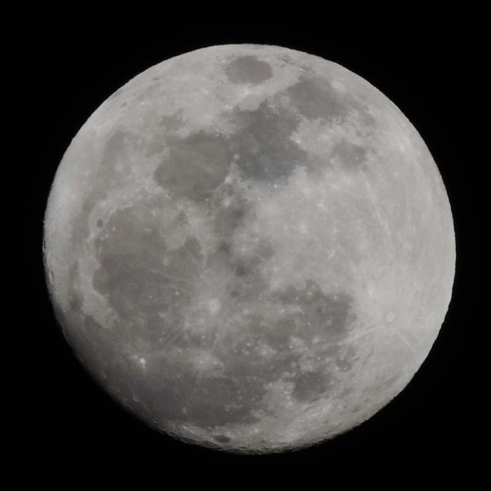 Nikon COOLPIX P520 月