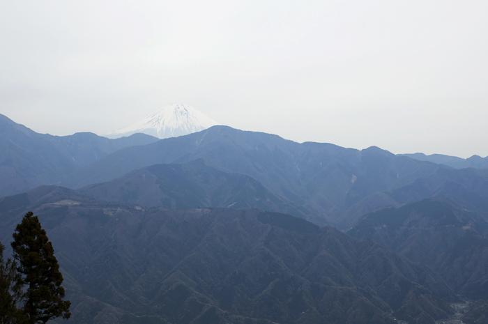 身延山ロープウェイ山頂からの景色