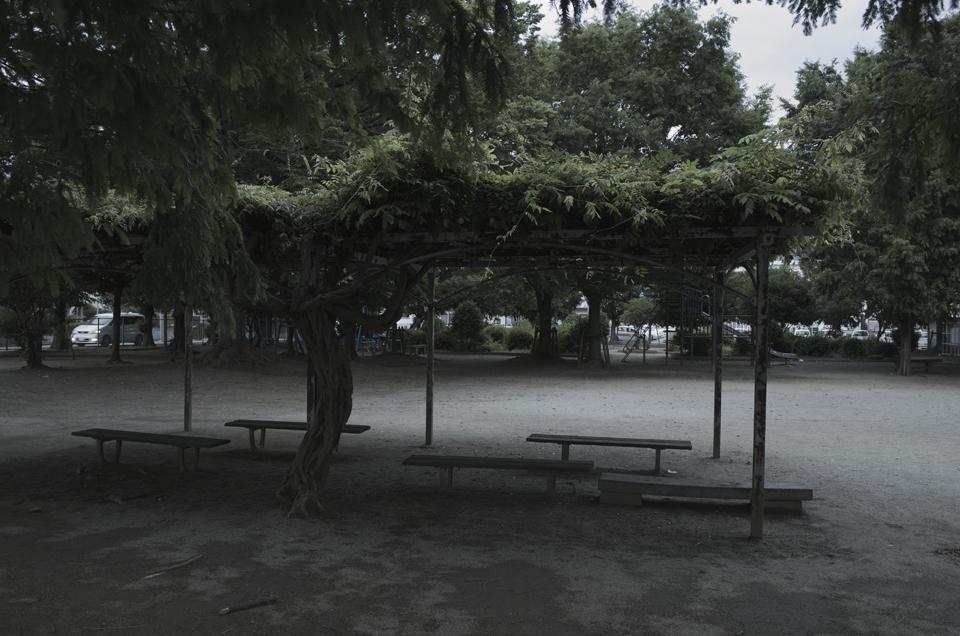 どんよりした雰囲気の公園