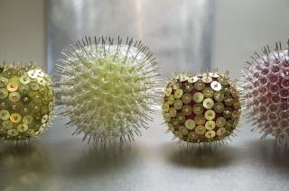 【食べられないリンゴ】アレルギーを視覚化するとこうなる
