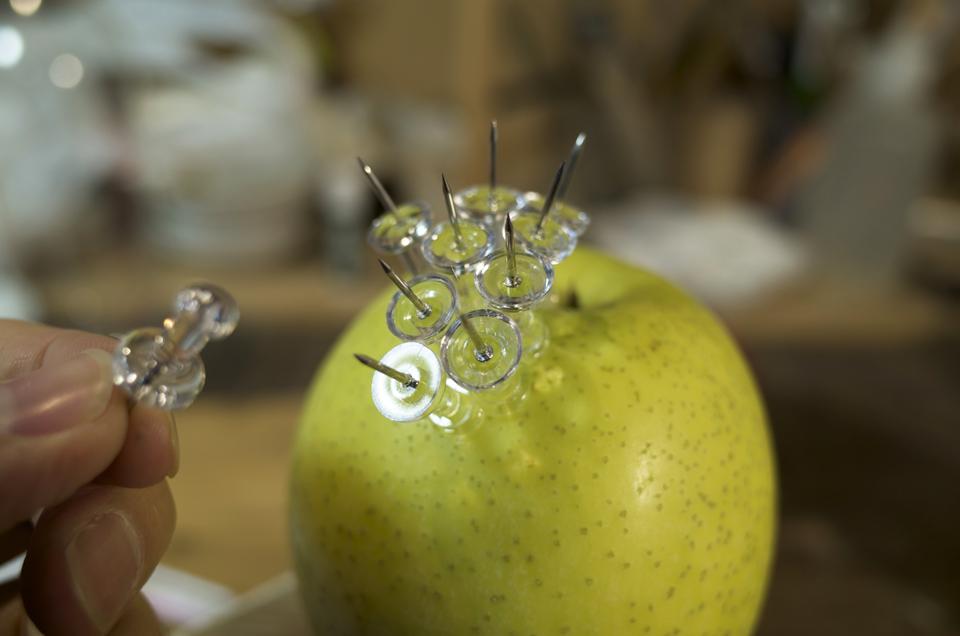 食べられないリンゴ 制作
