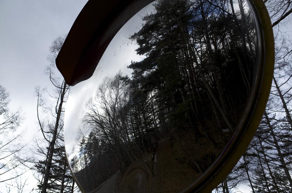 カーブミラーの反射した森