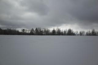 雪が綺麗過ぎる!12月のビーナスラインはこんな感じ