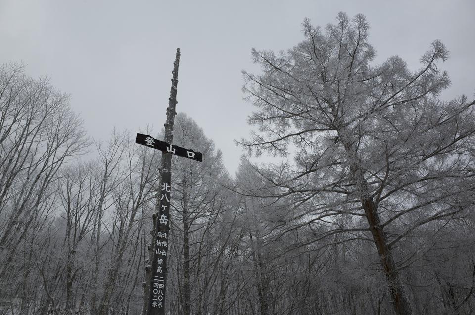 北八ヶ岳登山口