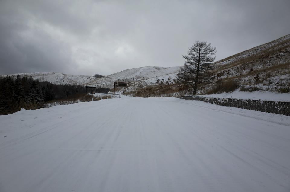 雪で覆われた道路