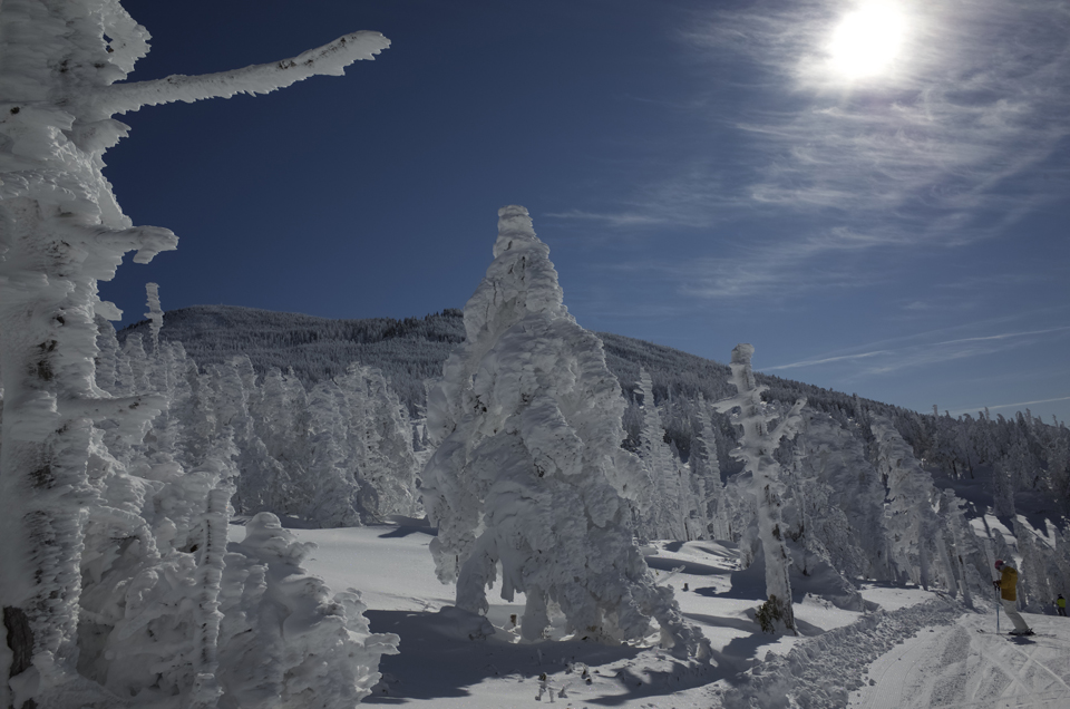 ピラタス蓼科スノーリゾート 樹氷コース