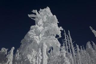 【ピラタス蓼科スノーリゾート】今シーズン初のスキーに行ってきました