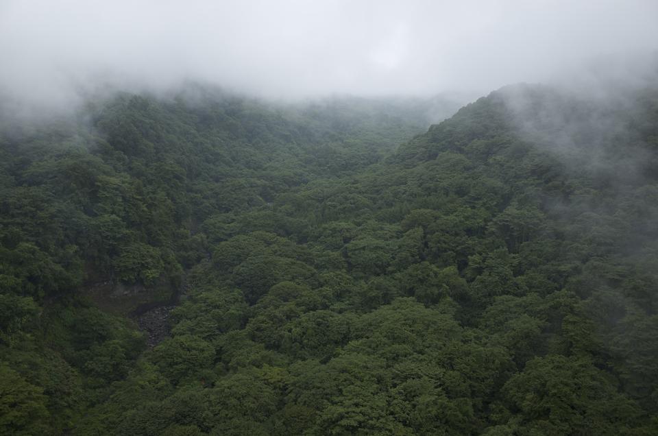 霧の出ている山