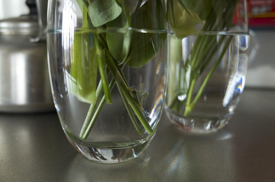 透明なガラスコップに生けられた花の根本