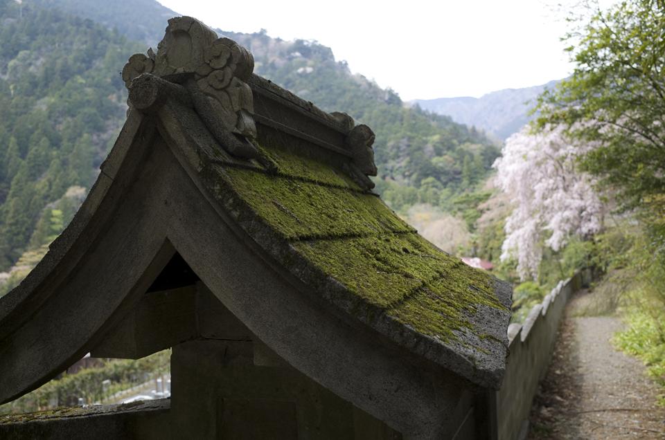 身延山久遠寺の風景
