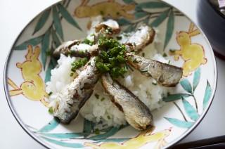 オイルサーディンは家に常備しておけば、いざというときに使える食材