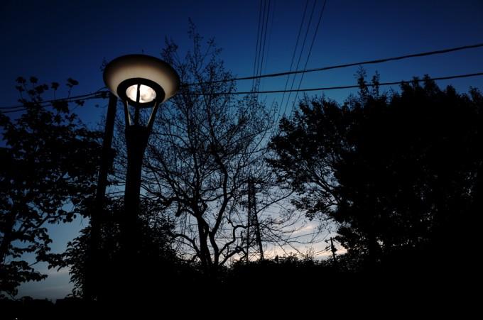 夕暮れの空と木のシルエット