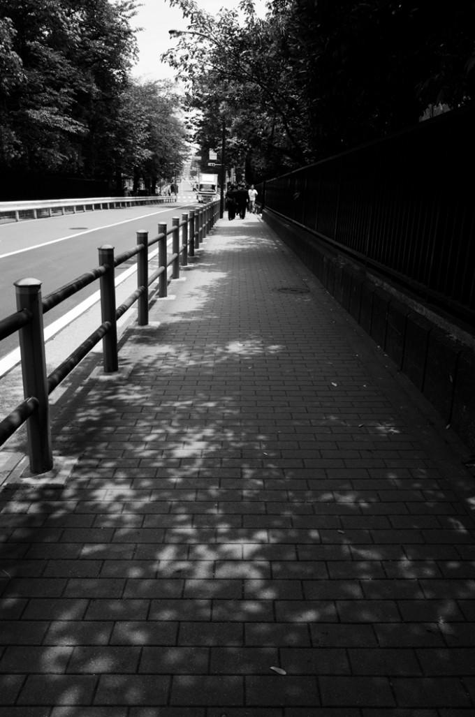木漏れ日の歩道